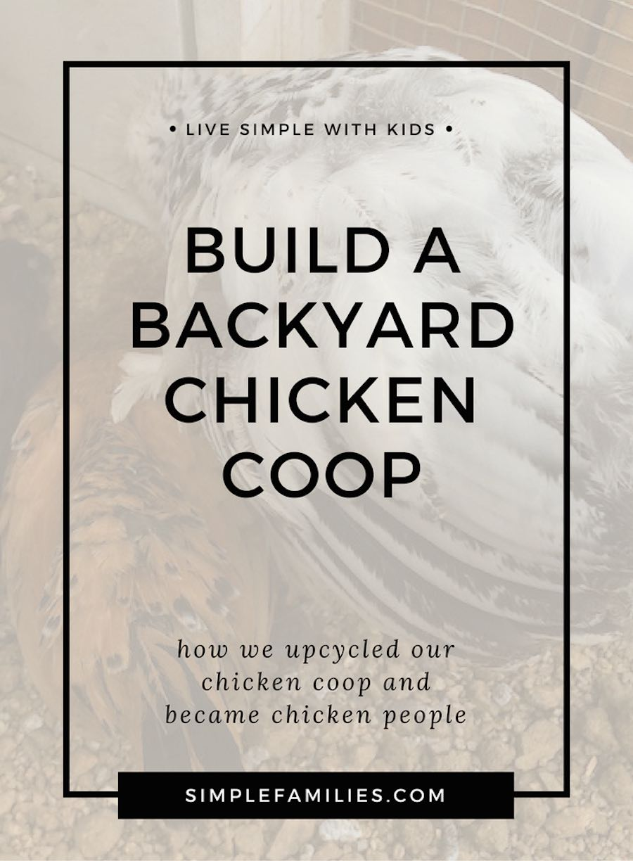 Why your family needs backyard chickens. We built a backyard chicken coop, it was easy to upcycle and great for families with kids.