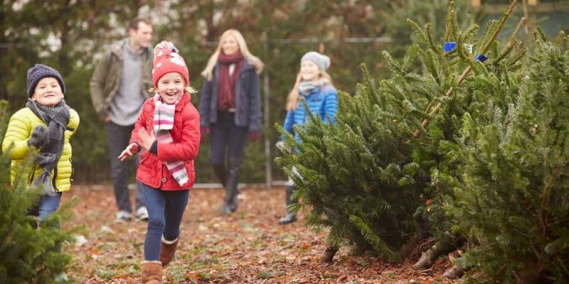 ideas to play outside with kids 2